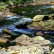 Serenity Stream