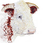 Sergeant Major Is A Hereford Bull Art Print
