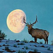Setting Moon And Elk Art Print