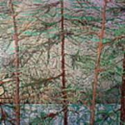 Seven  detail Art Print