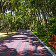 Shadow Alley In Sun Island Resort. Maldives  Art Print