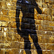Shadow Of Michaelangelo's David Art Print