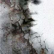 Shadow On A Wall Art Print