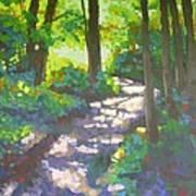 Shadowed Path Art Print
