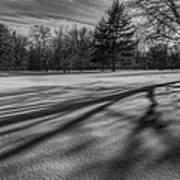 Shadows In The Park Art Print