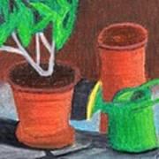 Shady Garden Corner Art Print by Bav Patel