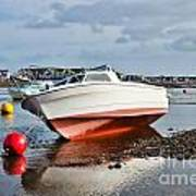 Shaldon-teignmouth Harbour Art Print