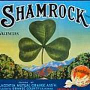 Shamrock Crate Label Art Print