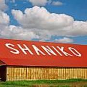 Shaniko Sky And Building Art Print