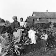 Sharecropper Family, 1902 Art Print
