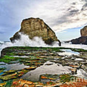 Shark Fin Cove Print by Jamie Pham