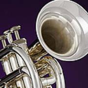 Sharp Silver Trumpet Art Print