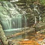 Shawnee Falls At Ricketts Glen Art Print