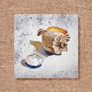 She Sells Sea Shells Decorative Collage Art Print