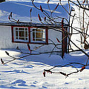 Shed In Winter Art Print
