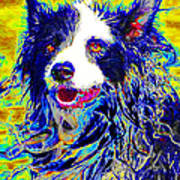 Sheep Dog 20130125v1 Art Print by Wingsdomain Art and Photography