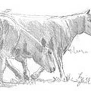 Sheep Walking Art Print