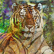 Shere Khan - Square Version Art Print
