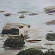 Shirley's Dog Art Print
