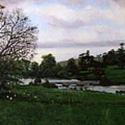 Shobrooke Park  Crediton  Devon Art Print