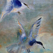 Shorebirds Art Print by Susan Hanlon