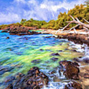 Shoreline At Puako Art Print