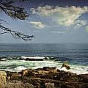 Shoreline View In Acadia National Park Art Print