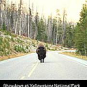 Showdown At Yellowstone Art Print