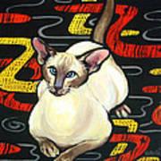 Siamese Cat On A Cushion Art Print