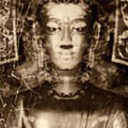 Siddhartha Gautama Art Print