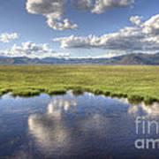 Sierra Valley Wetlands II Art Print