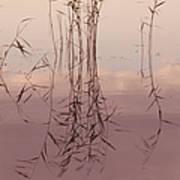 Silent Rhapsody. Sacred Music II Art Print by Jenny Rainbow