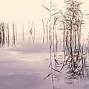 Silent Rhapsody. Sacred Music Art Print
