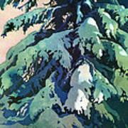 Silent Season Art Print by Kris Parins