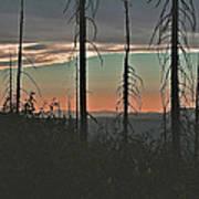 Silhouette @ Yosemite Art Print