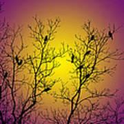 Silhouette Birds Art Print