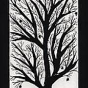 Silhouette Maple Art Print by Barbara St Jean