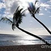 Silhouetted Palm Trees On Maui Beach Art Print