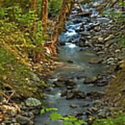 Silky Stream In Rain Forest Landscape Art Prints Art Print