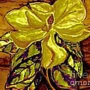 Silky Magnolia Print by Marsha Heiken