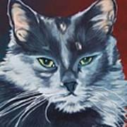 Silver Grey Cat Portrait Art Print
