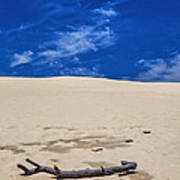 Silver Lake Dune With Dead Tree Branch And Cirrus Clouds Art Print