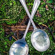 Silver Spoons  Art Print