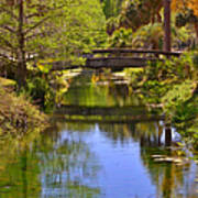 Silver Springs Florida Art Print