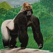 Silverback Gorilla Art Print by David Hawkes