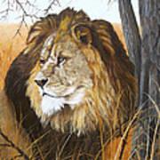 Simba Art Print