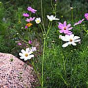 Simple Flowers 11460 Art Print
