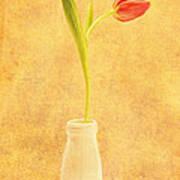 Simplicity -  No Words Art Print