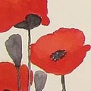 Simply Poppies 1 Art Print
