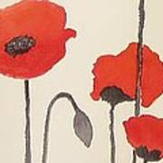 Simply Poppies 2. Art Print